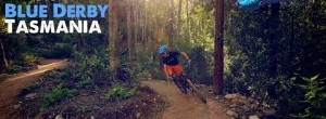 Flow in the Forest: Blue Derby Mountain Bike Trails, Tasmania