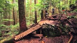 Mountain Unicycling – British Columbia