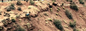 The Finals – Red Bull Rampage 2010
